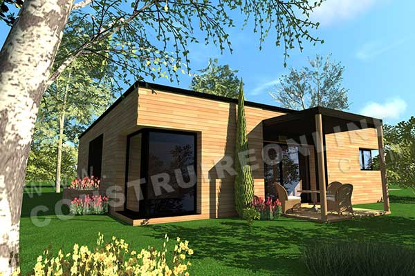 Vente de plan de maison d 39 architecte for Entree maison contemporaine